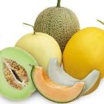 Kandungan Buah Melon Sebagai Sistem Proteksi Bagi Tubuh