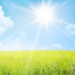 Ibu Rumah Tangga dan Matahari