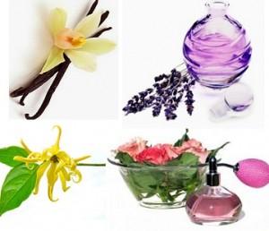 bunga bahan parfum