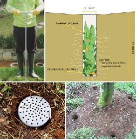 lubang biopori