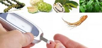 Cara Mengobati Penyakit Diabetes Menggunakan Ramuan Herbal
