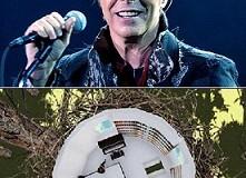 Rumah untuk Kenang David Bowie