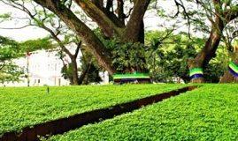 Taman Labirin Bandung, Tempat Bermain Seru di Bandung
