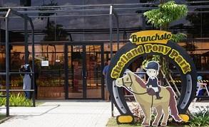 branchsto bsd Tangerang