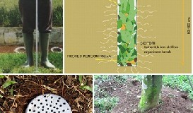 Cara Membuat Biopori