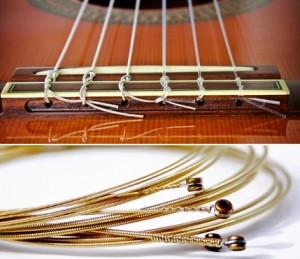 jenis senar gitar
