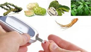 ramuan herbal untuk diabetes