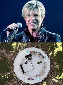 Rumah mengenang David Bowie